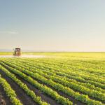 Levantamento aponta que o Brasil possui 135 startups voltadas para o agronegócio