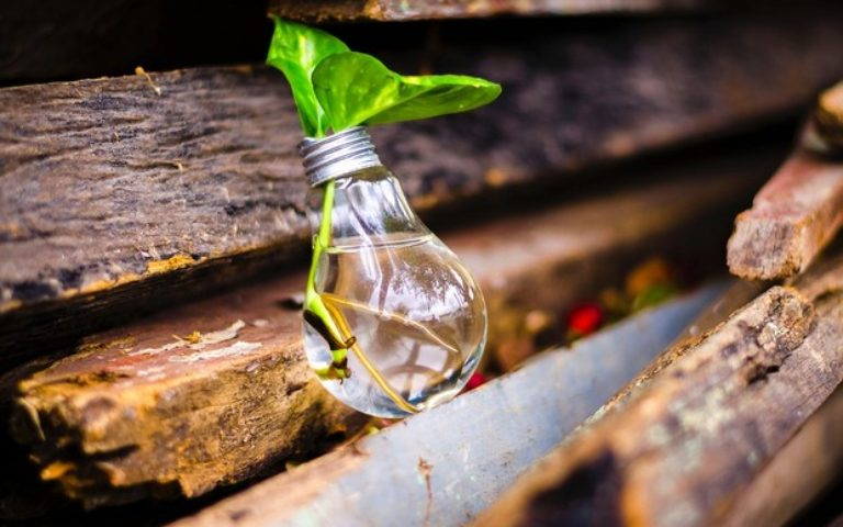 Os impactos da pandemia no ecossistema de inovação e empreendedorismo