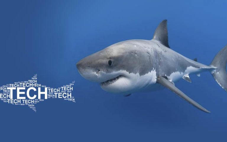 O tubarão acordou: Advent investe em empresas de tech e startups